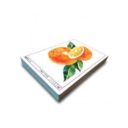 물맛수채화(50장 100컷) 문화센터 수채화 자료집, 취미수채화, 취미미술, 과일그리기 수채화교본, 수채화미술교수자료